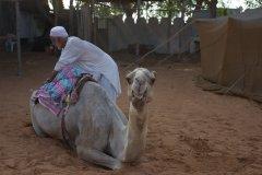abu-dhabi-143.jpg