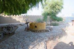 abu-dhabi-172.jpg