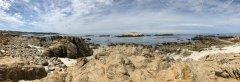 Monterey-.jpg