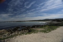 Monterey-557.jpg