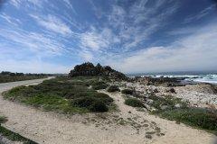 Monterey-565.jpg