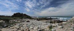 Monterey-566.jpg