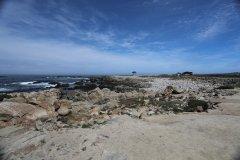 Monterey-567.jpg