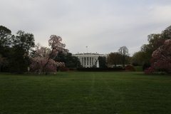 Washington-2015-48.jpg